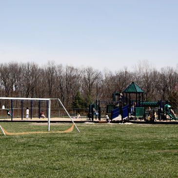 My first official blog post – evil monkey bars