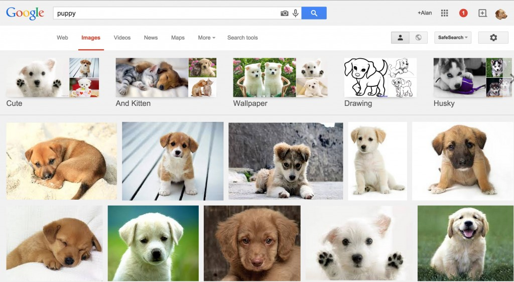 puppy-google