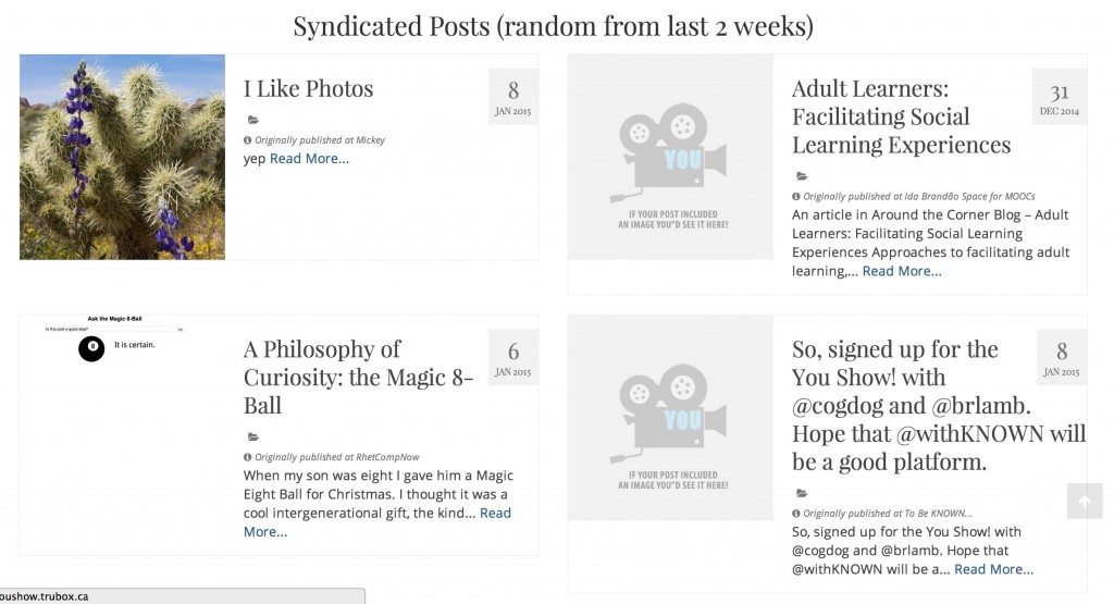 syndicated posts